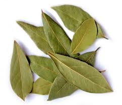 Cooking with herbs - the bay leaf