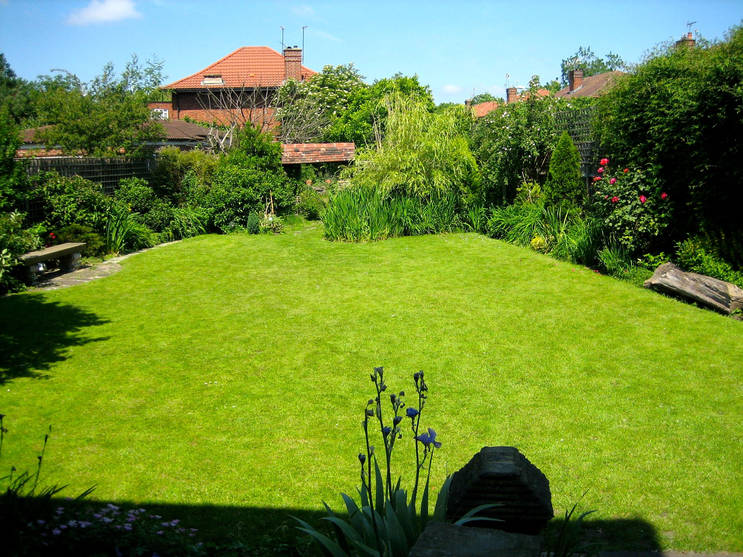 How to create a perfect lawn